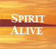 Picture of Spirit Alive TV Ministries logo.